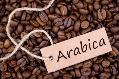Cà phê nguyên chất Arabica